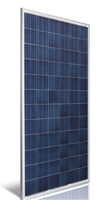 Astronergy ASM6612P-305 Wp > 305 Watt Solar Panel - Made in Germany