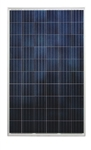 Astronergy CHSM6610P-255 Wp > 255 Watt Poly Solar Panels - 25 Panels