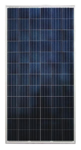 Astronergy CHSM6612P/HV-320 Wp > 320 Watt Poly Solar Panel Pallet - 25 Panels