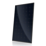 Canadian Solar CS6K-275W-T4 > 275 Watt Mono Solar Panel - Black Frame, Black Back Sheet