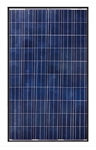 Canadian Solar CS6P-270P > 270 Watt Solar Panel, Black Frame