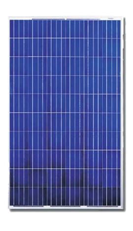Canadian Solar Cs6p 230p 230 Watt 29 Volt Solar Panel