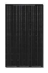 Canadian Solar Cs6p 255m Blk Gt 255 Watt Black Solar Panel