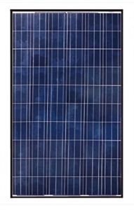 Canadian Solar CS6P-265P > 265 Watt Black Frame Solar Panel
