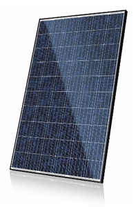 Canadian Solar CS6P-P-SD Smart Module 265 > 265 Watt Solar Panel - Black Frame
