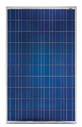 Conergy PH 235P - 235 Watt 29 Volt Solar Panel - CGY-50101