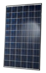Hanwha - Q-Cells 255 Watt Poly Solar Panel - Q.Pro-BFR-G3.255 - Black Frame