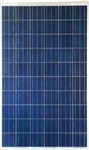 Lightway LW255-29-P1650x990 - 255 Watt Solar Panel