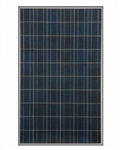 S-Energy Solar SM-250PC8 - 250 Watt Solar Panel