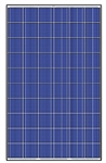 Trina Solar TSM-255PD05.08 > 255 Watt Black Frame Solar Panel Pallet - 30 Panels