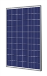 Trina Solar TSM-265PD05.08 > 265 Watt Black Frame Solar Panel