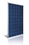 Astronergy ASM6610P-260 Wp > 260 Watt Poly Solar Panel - Made in Germany