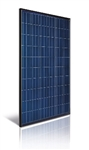 Astronergy ASM6610P (BF) 260 Wp > 260 Watt Poly Solar Panel - Made in Germany - Black Frame