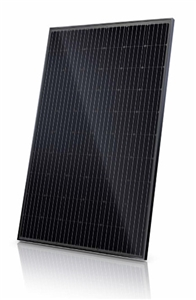 Canadian Solar CS6K-All Black-295MS > 295 Watt Mono-PERC Solar Panel - 35mm Frame - 15A Fuse - Black Frame, Black Backsheet