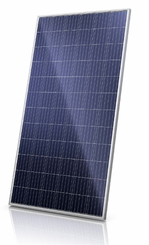 Canadian Solar 320 Watt Solar Panel - CS6U-320P