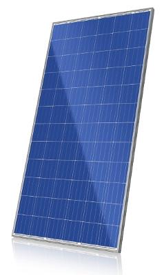Canadian Solar 320 Watt Solar Panel - CS6X-320P - Pallet of