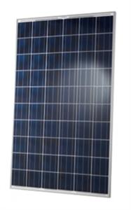 Hanwha Q Cells 275 Watt Poly Solar Panel Q Plus G3 275