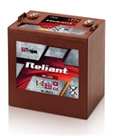 Trojan Battery T875-AGM > 8 volt 160 Amp Hour Deep-Cycle Reliant AGM Battery